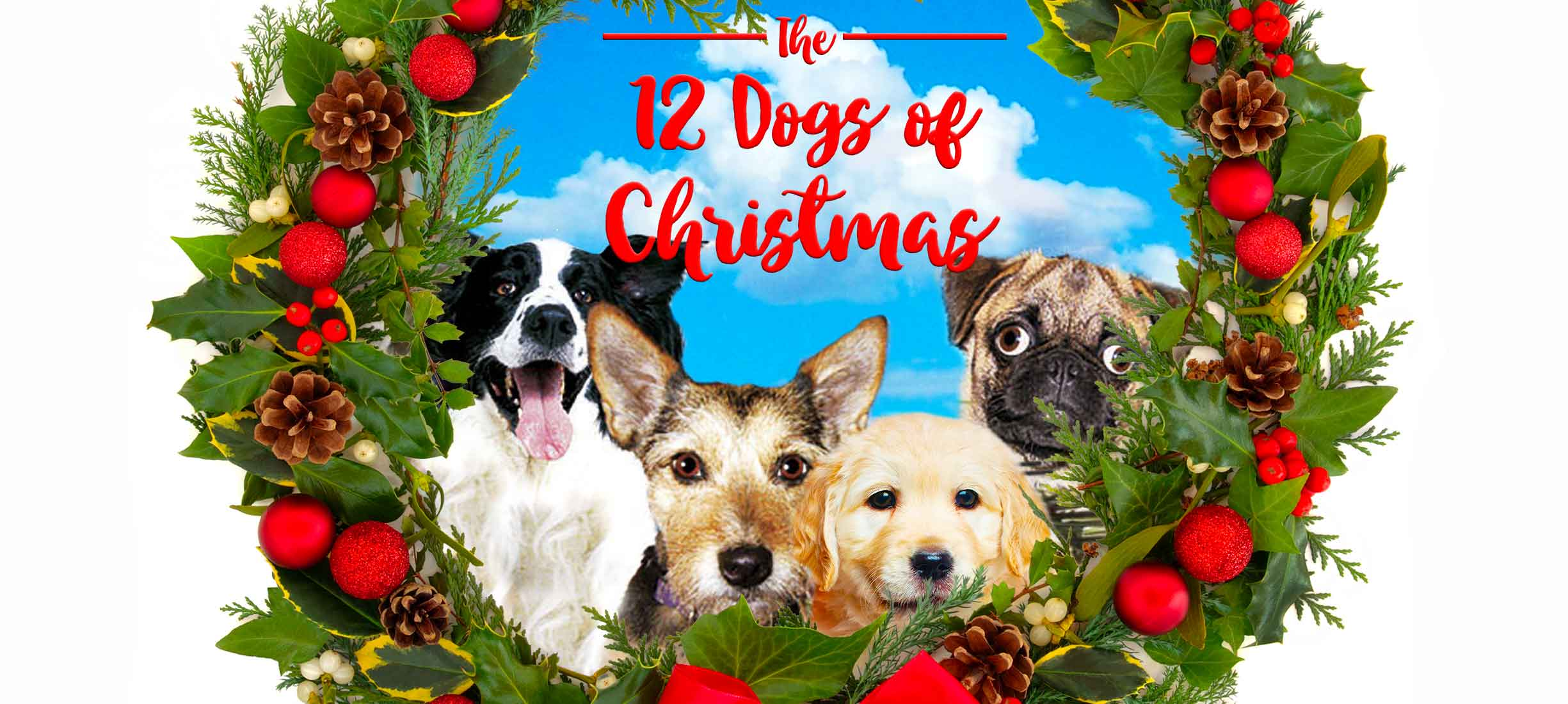 12 Dogs Of Christmas.12 Dogs Of Christmas Pure Flix
