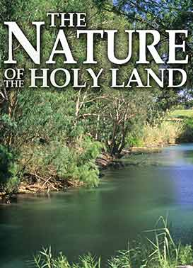 Nature Of The Holy Land