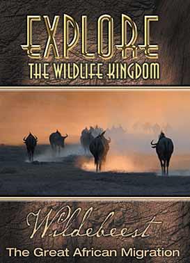 Explore The Wildlife Kingdom