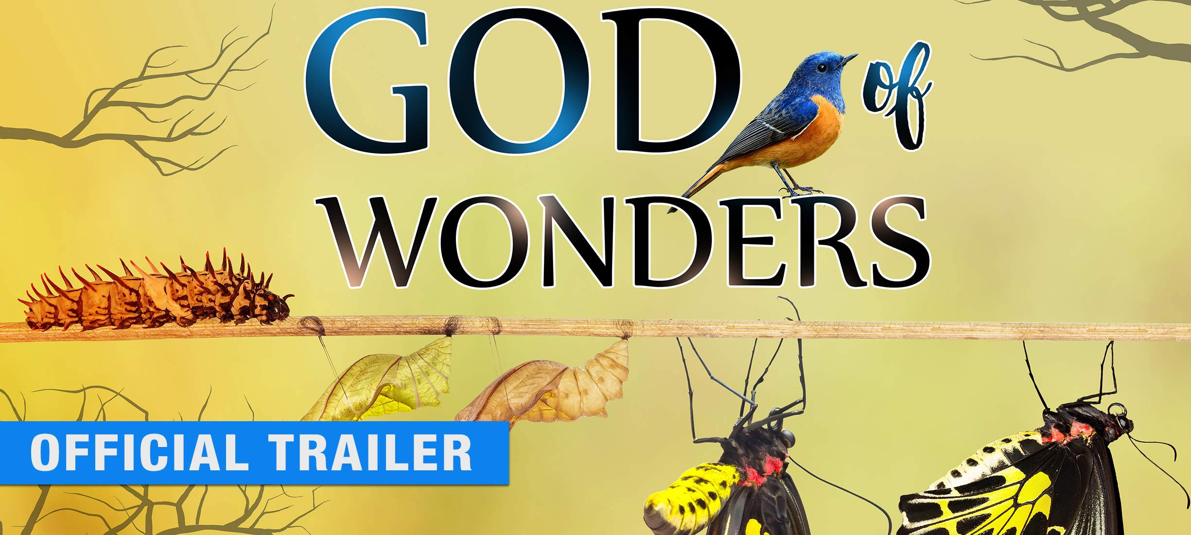 God of Wonders - Official Trailer