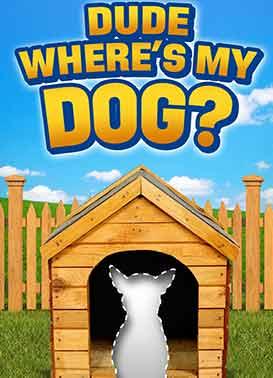 Dude, Where's My Dog