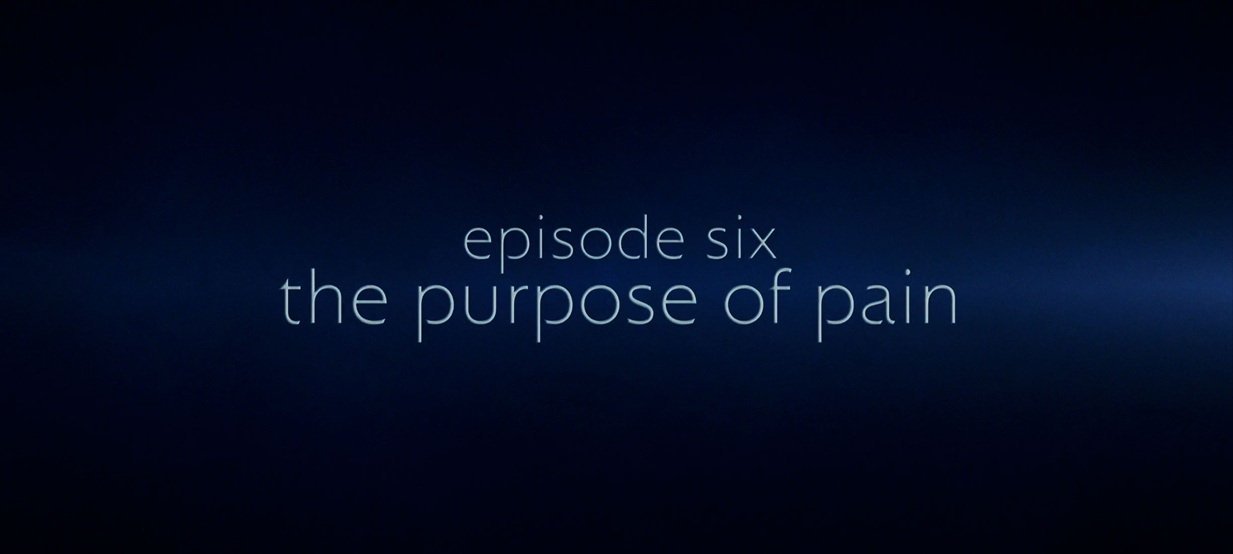 The Purpose of Pain