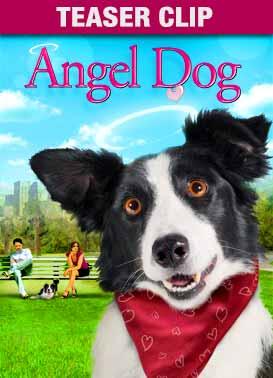 Angeldog teaser ca